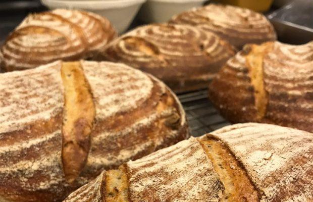 Juurileivottuja leipiä.